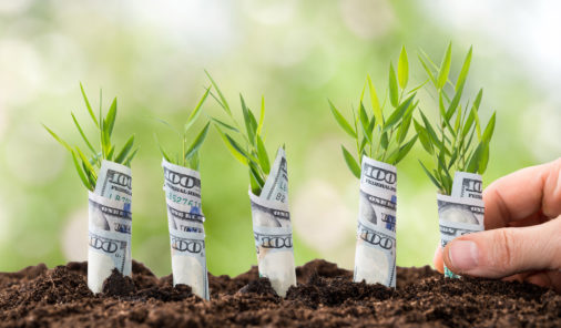 How to Grow Your Newly Purchased Site Using Content